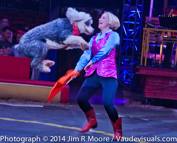 Jenny Vidbel performs with her dogs at Big Apple Circus
